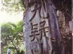 乡情 - 湘妃竹